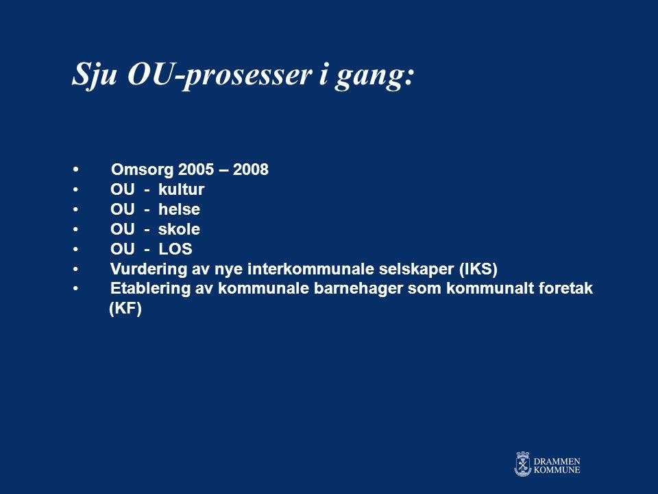 • Omsorg 2005 – 2008 • OU - kultur • OU - helse • OU - skole • OU - LOS • Vurdering av nye interkommunale selskaper (IKS) • Etablering av kommunale barnehager som kommunalt foretak (KF) Sju OU-prosesser i gang:
