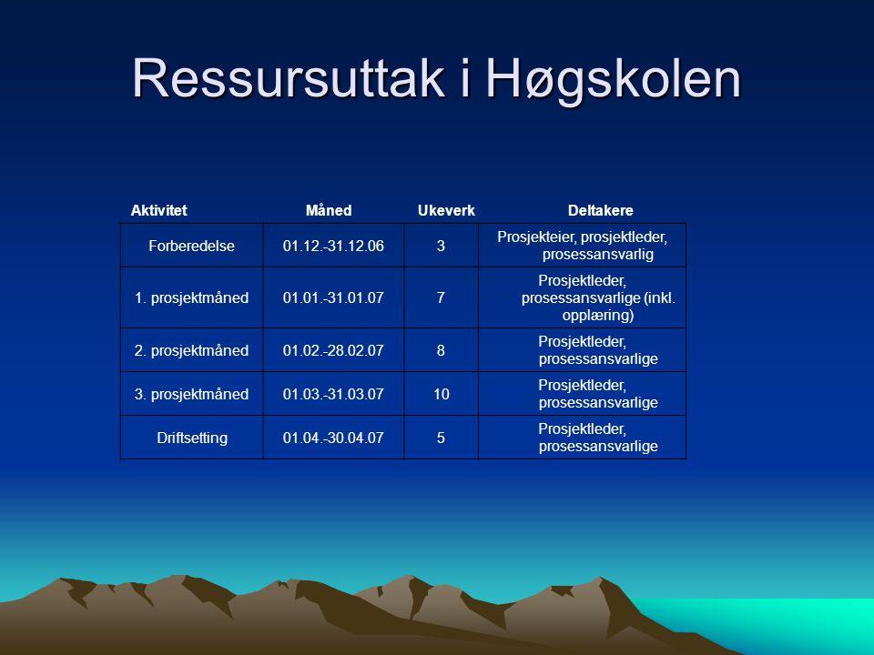 Ressursuttak i Høgskolen AktivitetMåned UkeverkDeltakere Forberedelse01.12.-31.12.063 Prosjekteier, prosjektleder, prosessansvarlig 1.