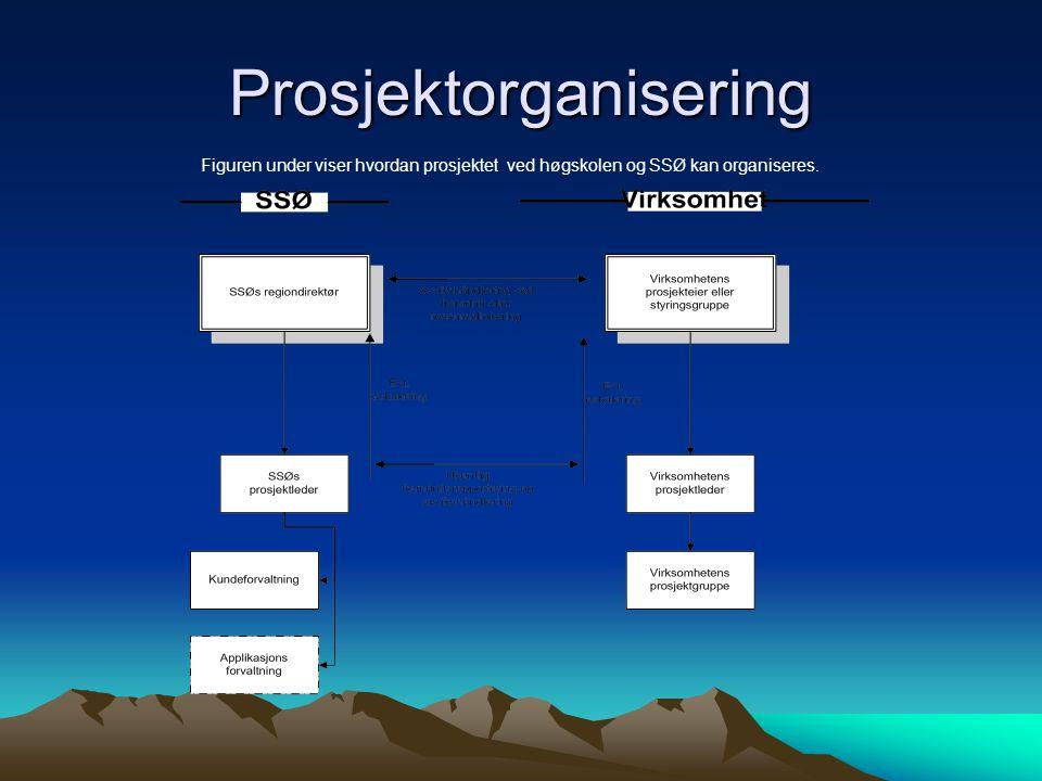 Prosjektorganisering Figuren under viser hvordan prosjektet ved høgskolen og SSØ kan organiseres.