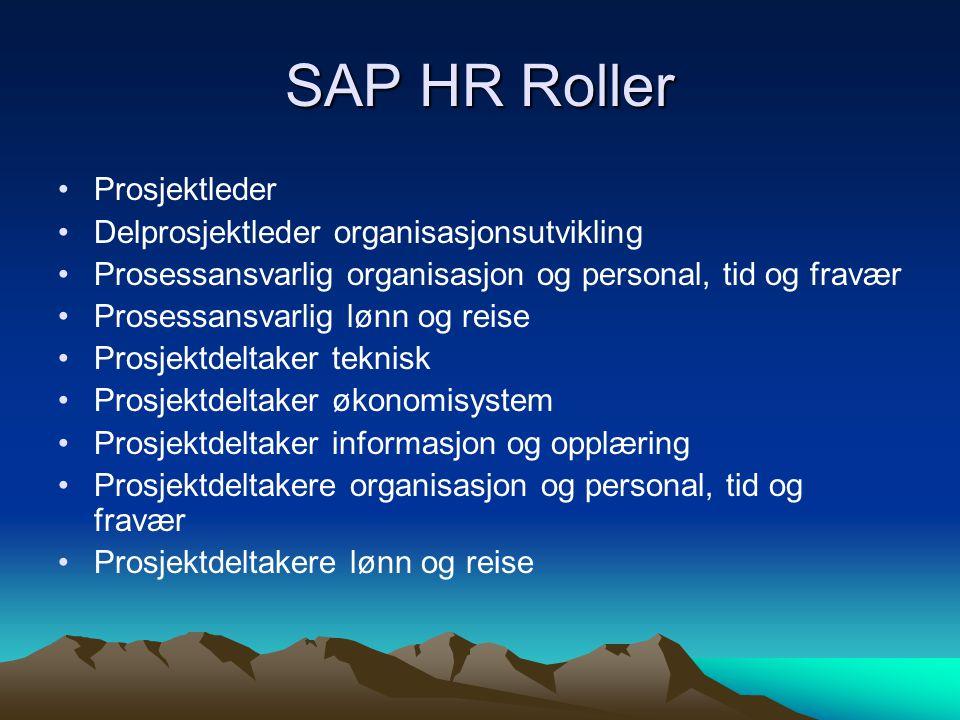SAP HR Roller •Prosjektleder •Delprosjektleder organisasjonsutvikling •Prosessansvarlig organisasjon og personal, tid og fravær •Prosessansvarlig lønn og reise •Prosjektdeltaker teknisk •Prosjektdeltaker økonomisystem •Prosjektdeltaker informasjon og opplæring •Prosjektdeltakere organisasjon og personal, tid og fravær •Prosjektdeltakere lønn og reise