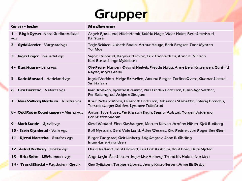 Grupper Gr nr - lederMedlemmer 1 – Birgit Dyrset - Nord-Gudbrandsdal vgs Asgeir Bjørklund, Hilde Homb, Solfrid Hage, Vidar Holm, Berit Smedsrud, Pål S