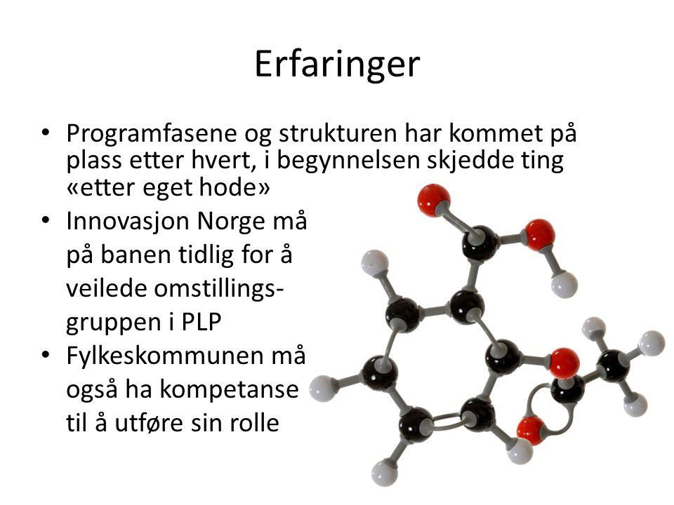 Erfaringer • Programfasene og strukturen har kommet på plass etter hvert, i begynnelsen skjedde ting «etter eget hode» • Innovasjon Norge må på banen