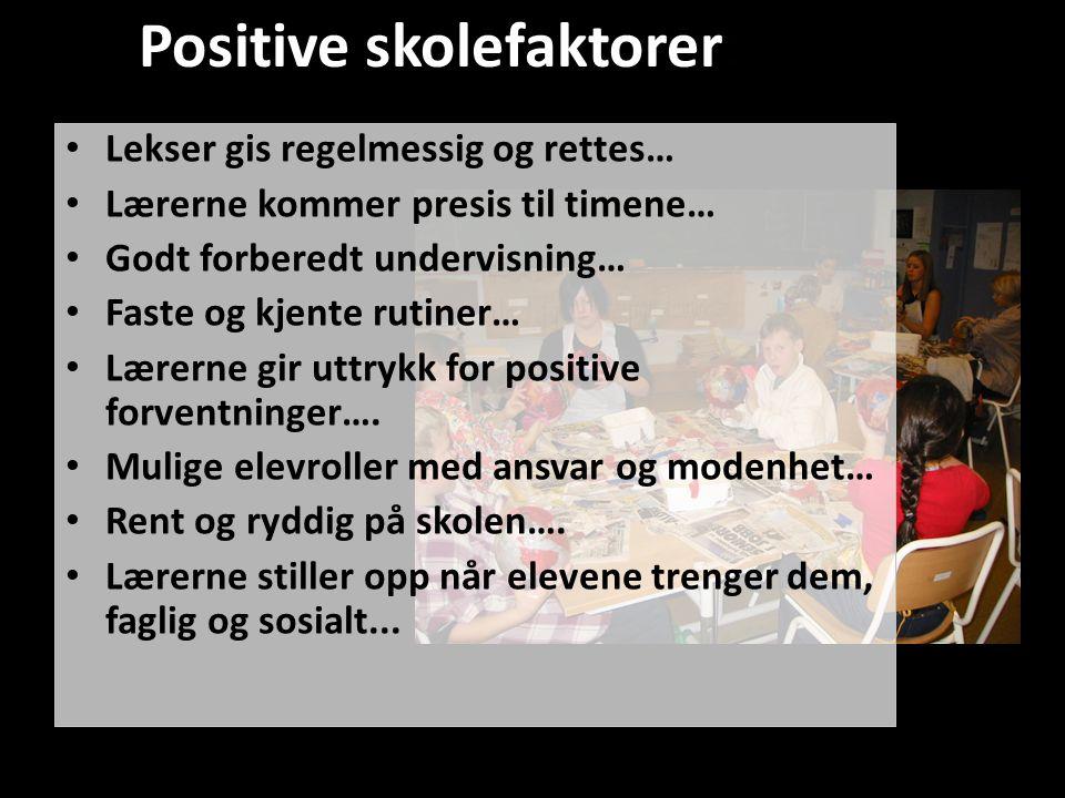 Positive skolefaktorer: • Lekser gis regelmessig og rettes… • Lærerne kommer presis til timene… • Godt forberedt undervisning… • Faste og kjente rutin