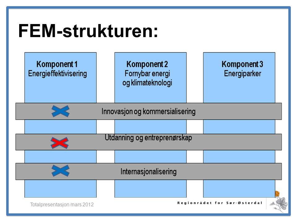 ElverumRegionens NæringsUtvikling FEM-strukturen: Totalpresentasjon mars 2012