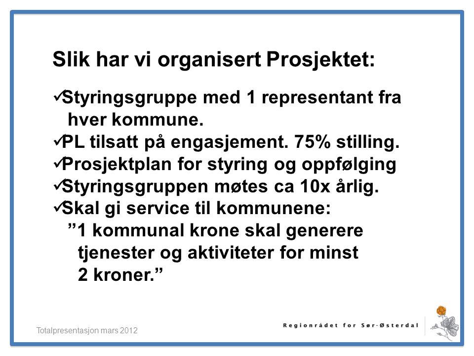 ElverumRegionens NæringsUtvikling Slik har vi organisert Prosjektet: Totalpresentasjon mars 2012  Styringsgruppe med 1 representant fra hver kommune.