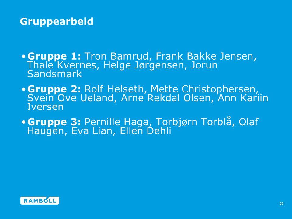 Gruppearbeid •Gruppe 1: Tron Bamrud, Frank Bakke Jensen, Thale Kvernes, Helge Jørgensen, Jorun Sandsmark •Gruppe 2: Rolf Helseth, Mette Christophersen