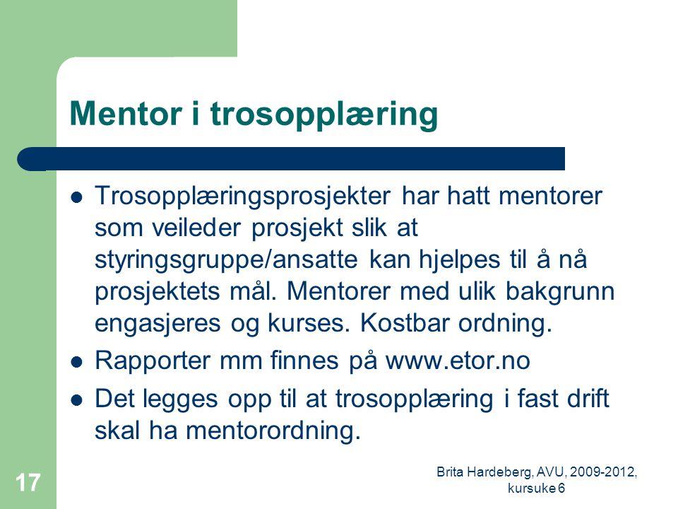 Mentor i trosopplæring  Trosopplæringsprosjekter har hatt mentorer som veileder prosjekt slik at styringsgruppe/ansatte kan hjelpes til å nå prosjektets mål.