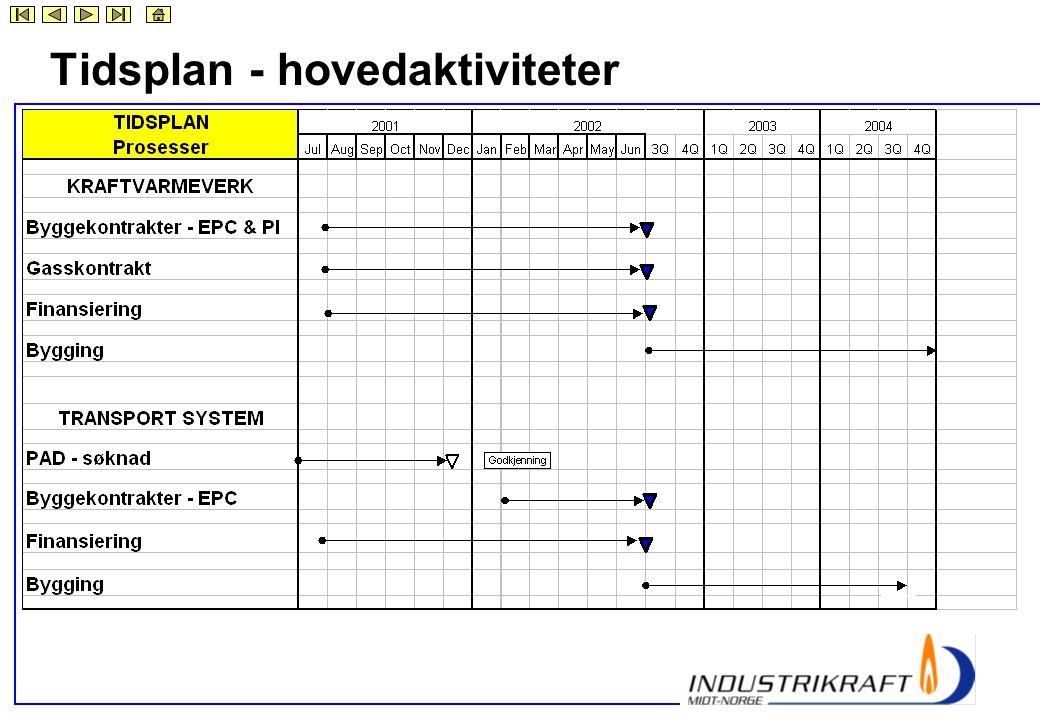 Tidsplan - hovedaktiviteter