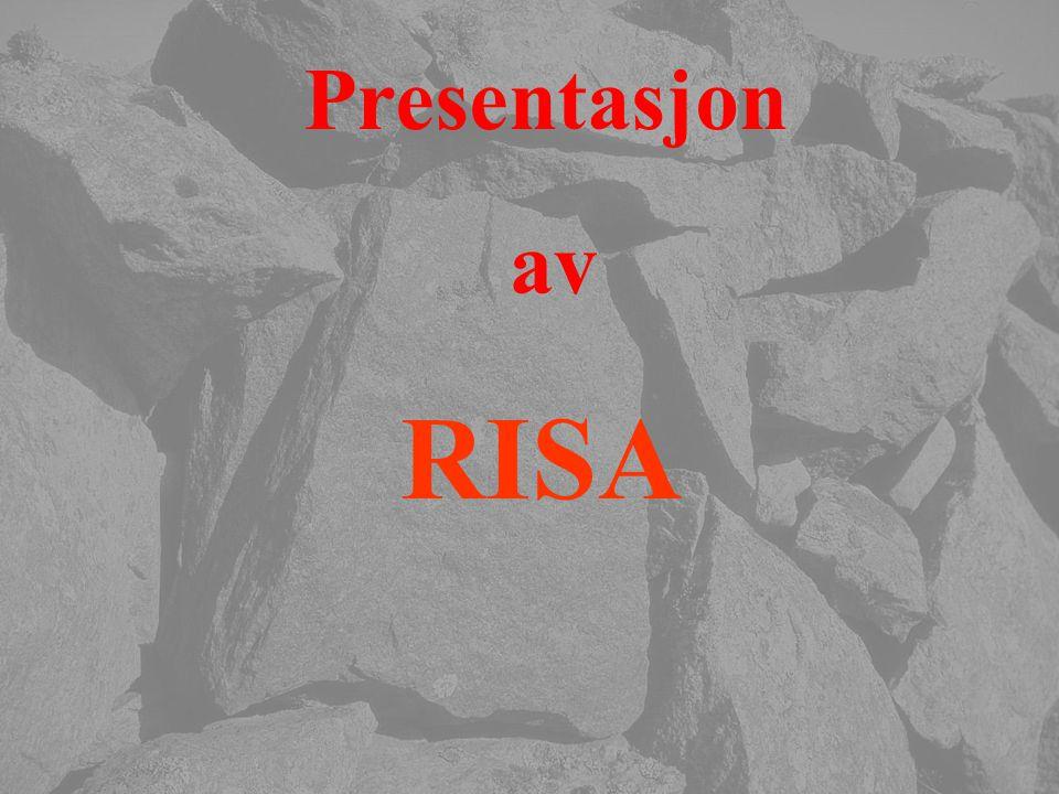 Presentasjon av RISA