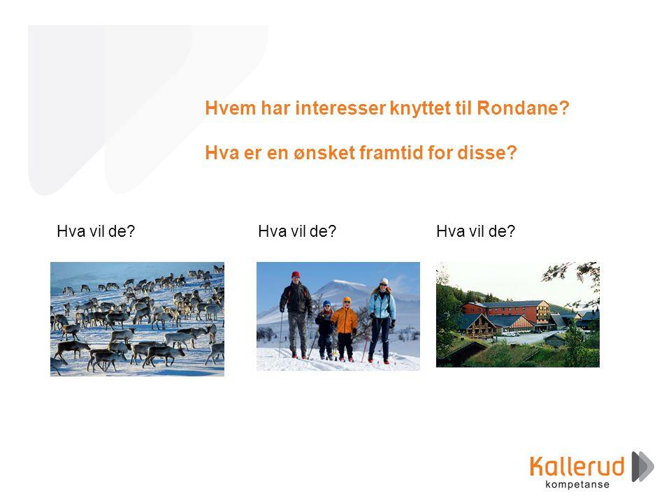 Hvem har interesser knyttet til Rondane. Hva er en ønsket framtid for disse.
