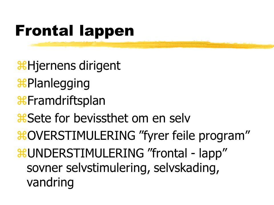 """Frontal lappen zHjernens dirigent zPlanlegging zFramdriftsplan zSete for bevissthet om en selv zOVERSTIMULERING """"fyrer feile program"""" zUNDERSTIMULERIN"""