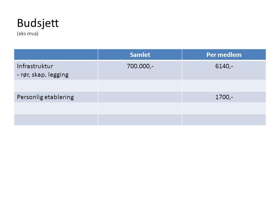 Budsjett (eks mva) SamletPer medlem Infrastruktur - rør, skap, legging 700.000,-6140,- Personlig etablering1700,-