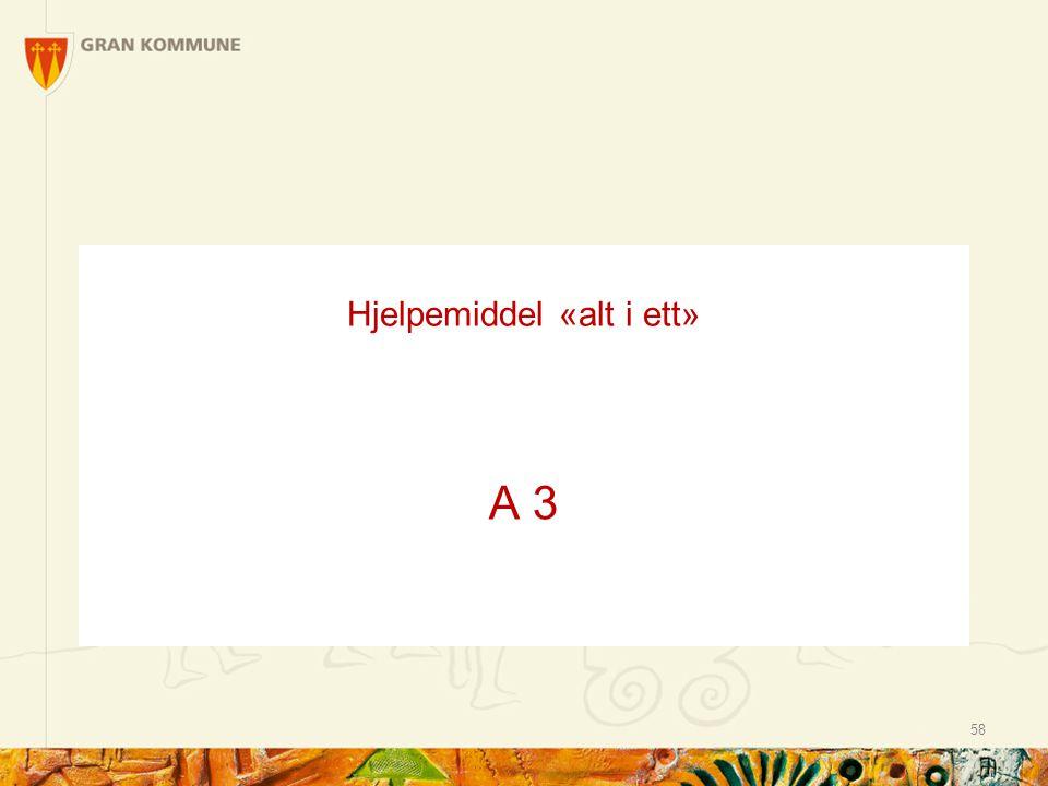 Hjelpemiddel «alt i ett» A 3 58
