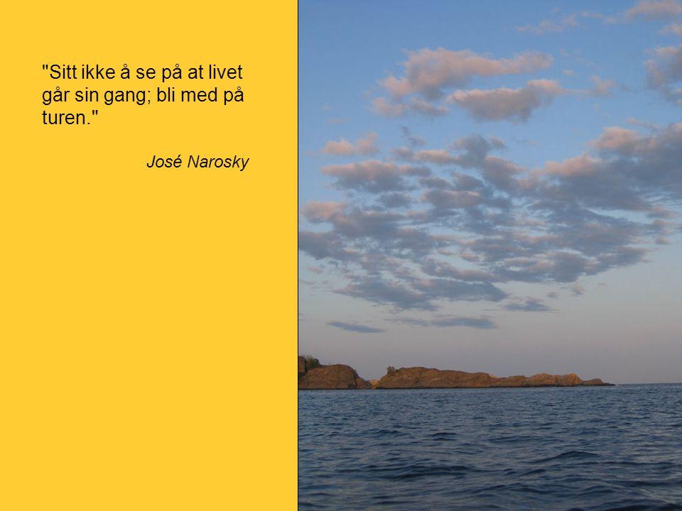 Sitt ikke å se på at livet går sin gang; bli med på turen. José Narosky