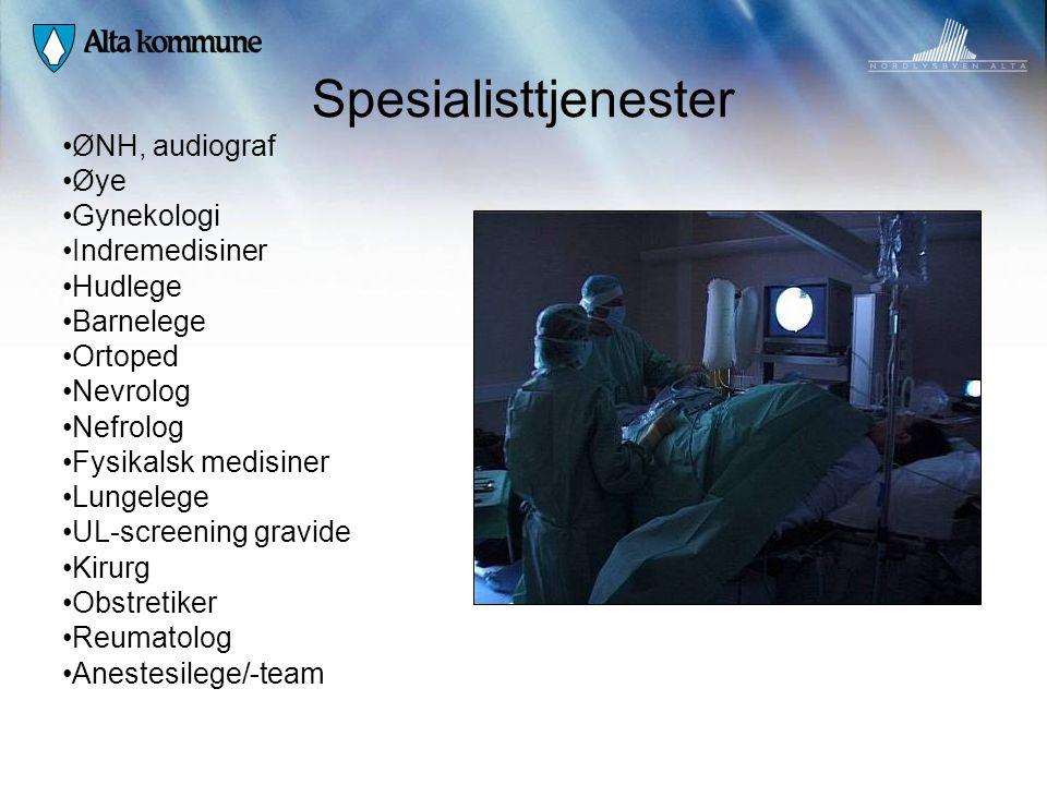 Spesialisttjenester • ØNH, audiograf • Øye • Gynekologi • Indremedisiner • Hudlege • Barnelege • Ortoped • Nevrolog • Nefrolog • Fysikalsk medisiner •