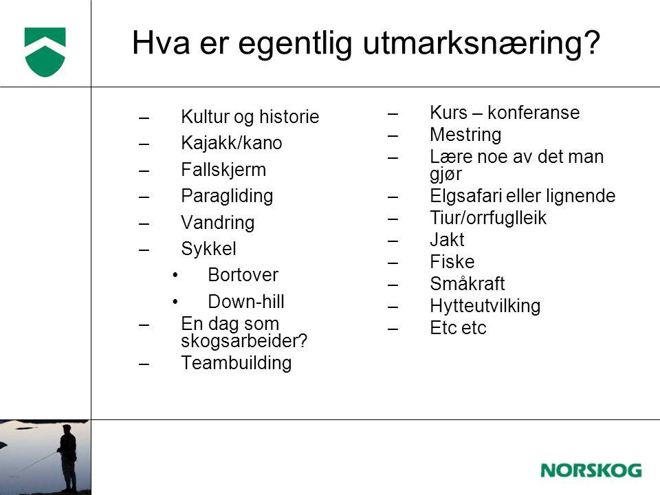 –Kultur og historie –Kajakk/kano –Fallskjerm –Paragliding –Vandring –Sykkel •Bortover •Down-hill –En dag som skogsarbeider? –Teambuilding Hva er egent