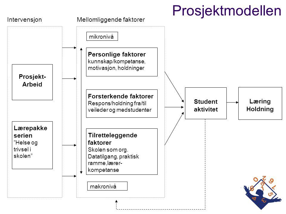 makronivå Prosjekt- Arbeid Student aktivitet Læring Holdning Tilretteleggende faktorer Skolen som org. Datatilgang, praktisk ramme,lærer- kompetanse F