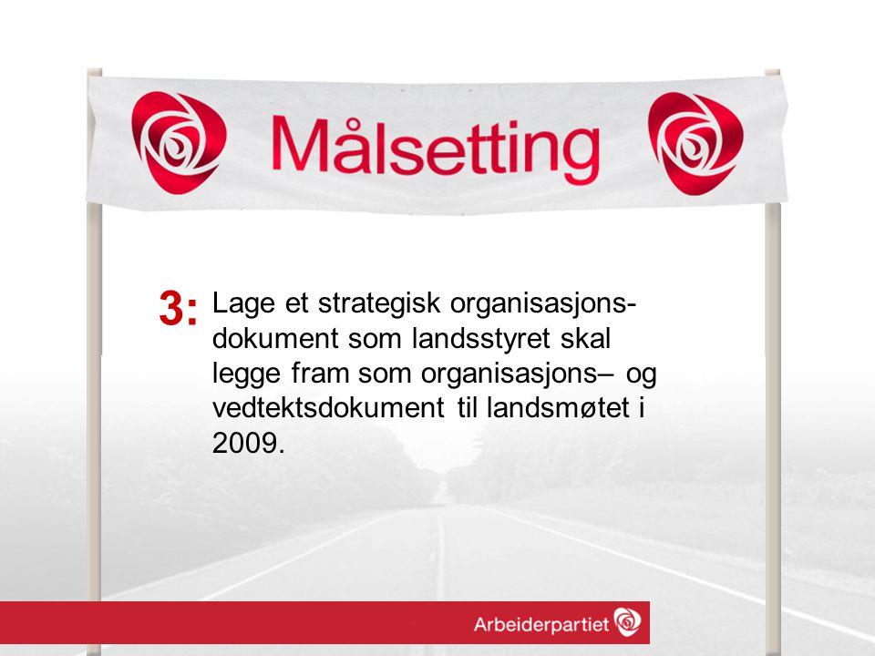 Lage et strategisk organisasjons- dokument som landsstyret skal legge fram som organisasjons– og vedtektsdokument til landsmøtet i 2009.