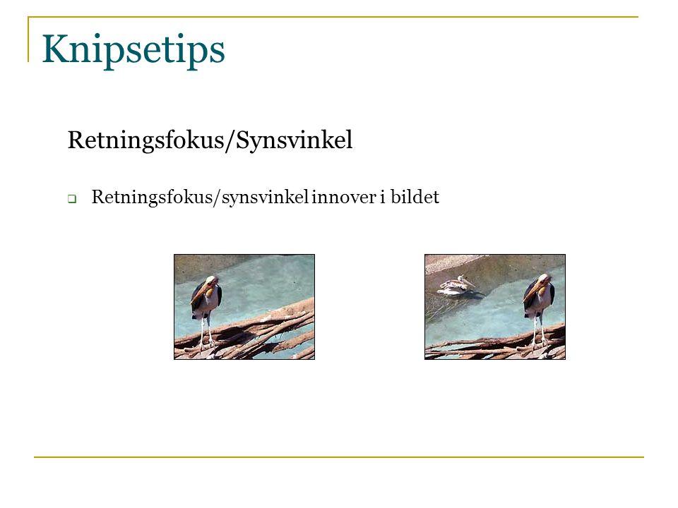 Knipsetips Retningsfokus/Synsvinkel  Retningsfokus/synsvinkel innover i bildet