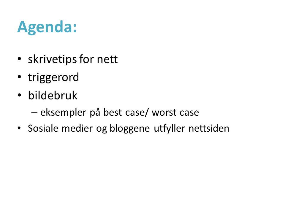 Agenda: • skrivetips for nett • triggerord • bildebruk – eksempler på best case/ worst case • Sosiale medier og bloggene utfyller nettsiden