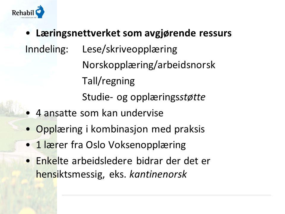 •Læringsnettverket som avgjørende ressurs Inndeling:Lese/skriveopplæring Norskopplæring/arbeidsnorsk Tall/regning Studie- og opplæringsstøtte •4 ansat