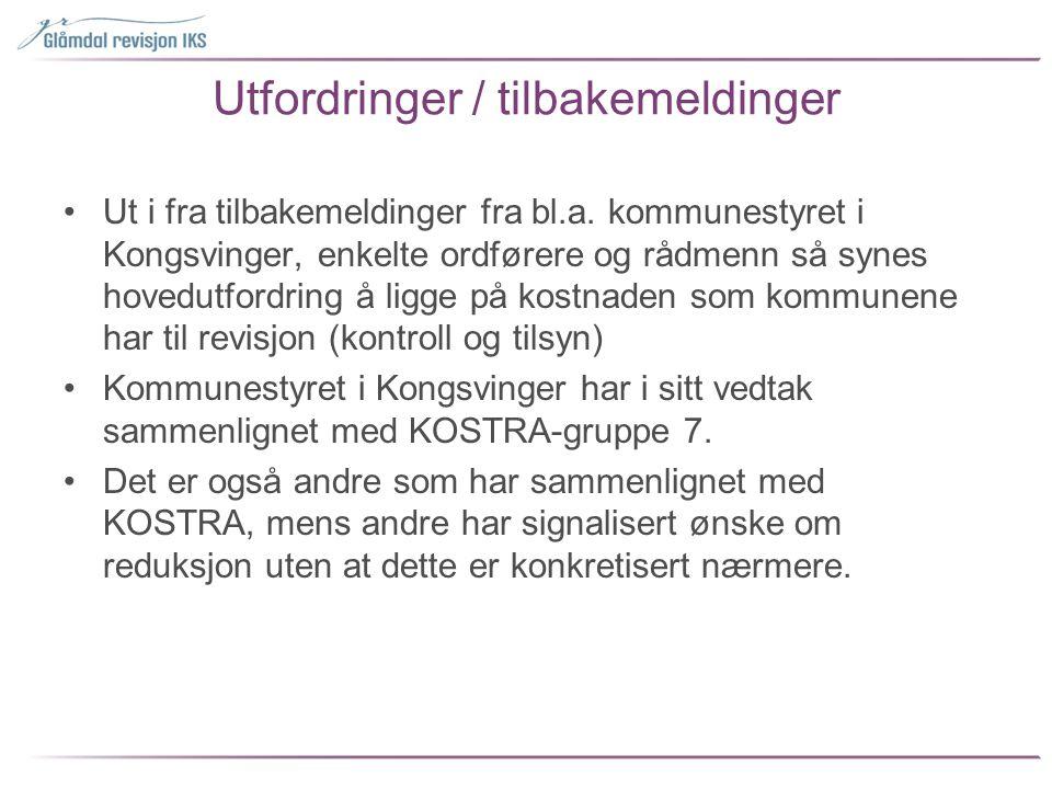 Utfordringer / tilbakemeldinger •Ut i fra tilbakemeldinger fra bl.a. kommunestyret i Kongsvinger, enkelte ordførere og rådmenn så synes hovedutfordrin