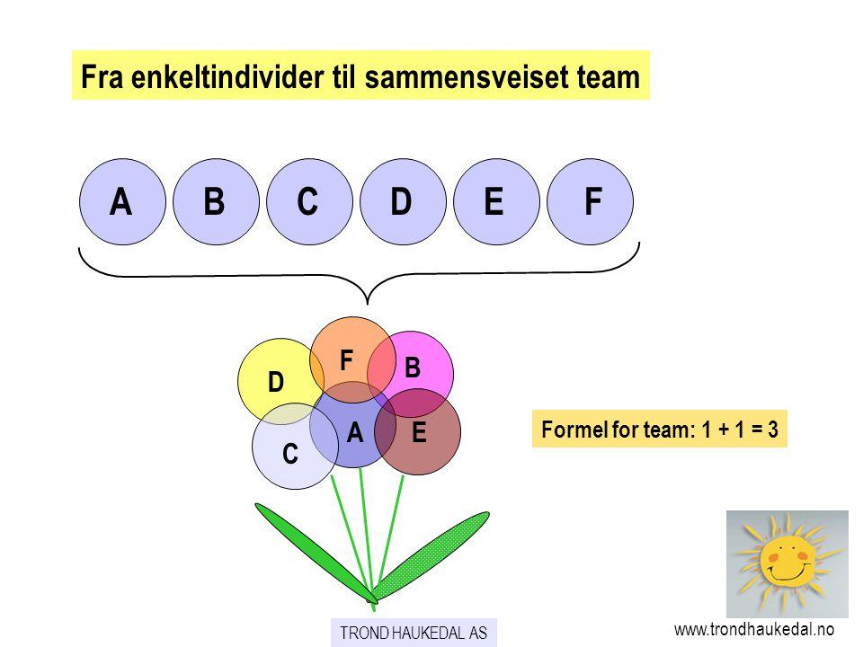 Fra enkeltindivider til sammensveiset team TROND HAUKEDAL AS www.trondhaukedal.no ABCDEF A B C D E F Formel for team: 1 + 1 = 3