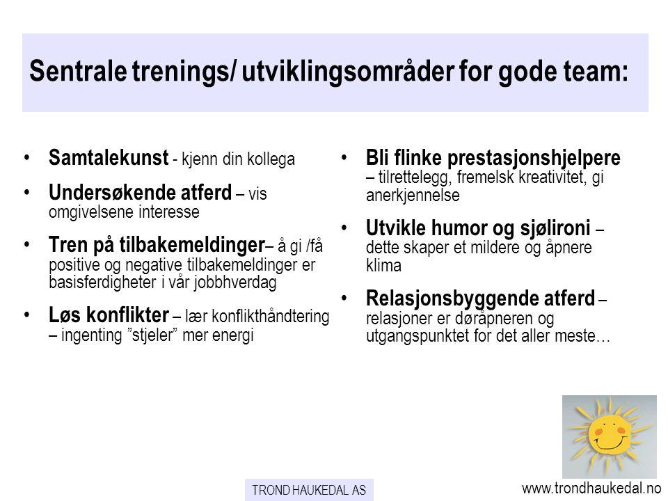 Sentrale trenings/ utviklingsområder for gode team: • Samtalekunst - kjenn din kollega • Undersøkende atferd – vis omgivelsene interesse • Tren på til