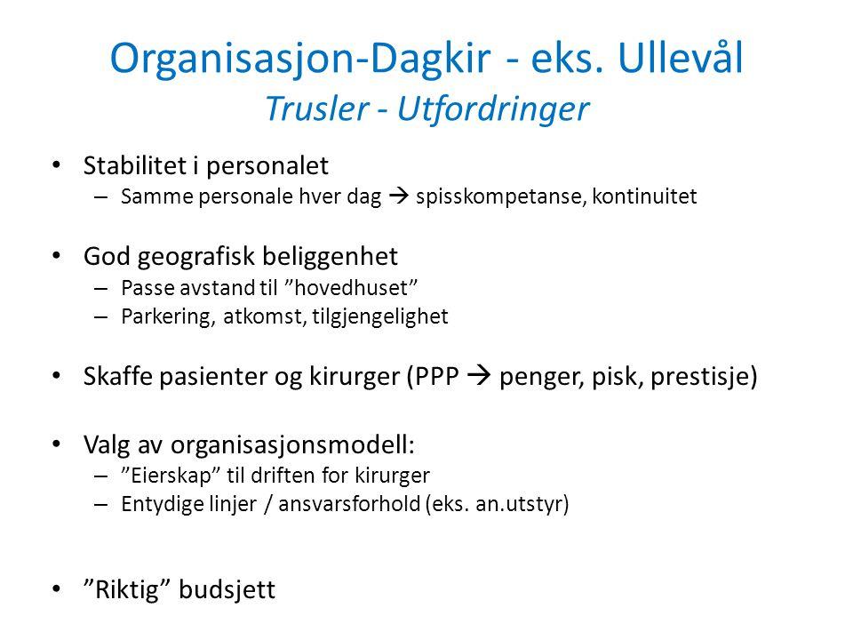 Organisasjon-Dagkir - eks.