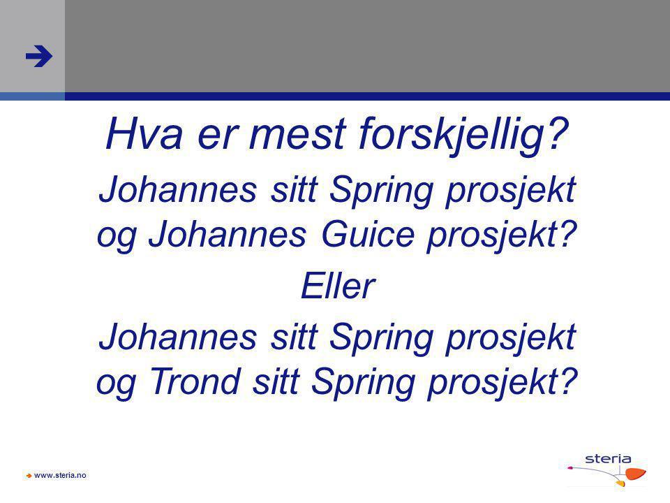  www.steria.no  Hva er mest forskjellig? Johannes sitt Spring prosjekt og Johannes Guice prosjekt? Eller Johannes sitt Spring prosjekt og Trond sitt