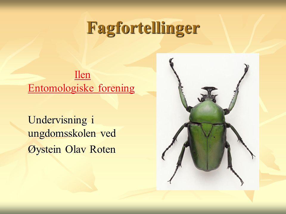 Fagfortellinger Ilen Entomologiske forening Ilen Entomologiske forening Undervisning i ungdomsskolen ved Øystein Olav Roten