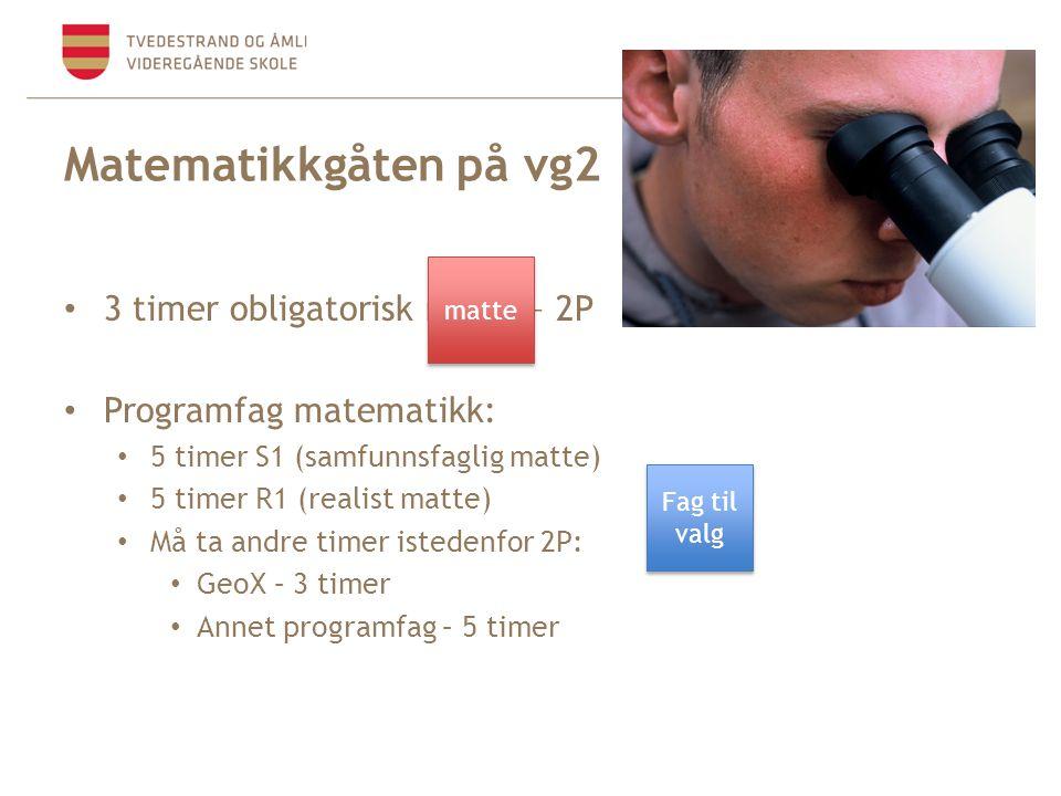 Matematikkgåten på vg2 • 3 timer obligatorisk matte – 2P • Programfag matematikk: • 5 timer S1 (samfunnsfaglig matte) • 5 timer R1 (realist matte) • Må ta andre timer istedenfor 2P: • GeoX – 3 timer • Annet programfag – 5 timer matte Fag til valg