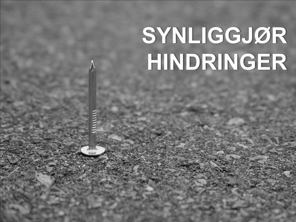 SYNLIGGJØRHINDRINGER