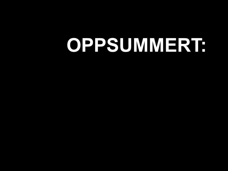 OPPSUMMERT: