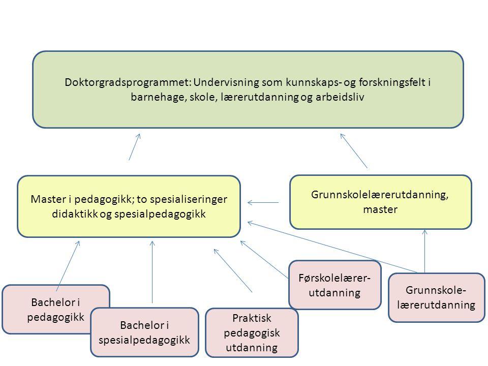 Bachelor i pedagogikk Bachelor i spesialpedagogikk Grunnskole- lærerutdanning Førskolelærer- utdanning Master i pedagogikk; to spesialiseringer didakt