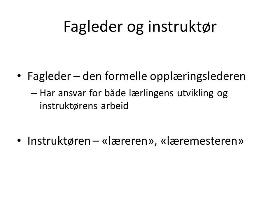 Fagleder og instruktør • Fagleder – den formelle opplæringslederen – Har ansvar for både lærlingens utvikling og instruktørens arbeid • Instruktøren – «læreren», «læremesteren»