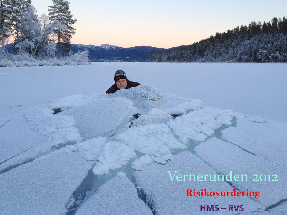 Vernerunden 2012 Risikovurdering