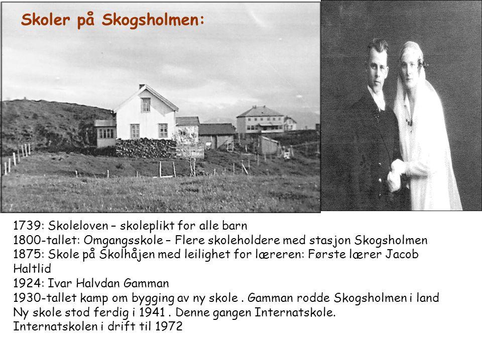 Skoler på Skogsholmen: 1739: Skoleloven – skoleplikt for alle barn 1800-tallet: Omgangsskole – Flere skoleholdere med stasjon Skogsholmen 1875: Skole