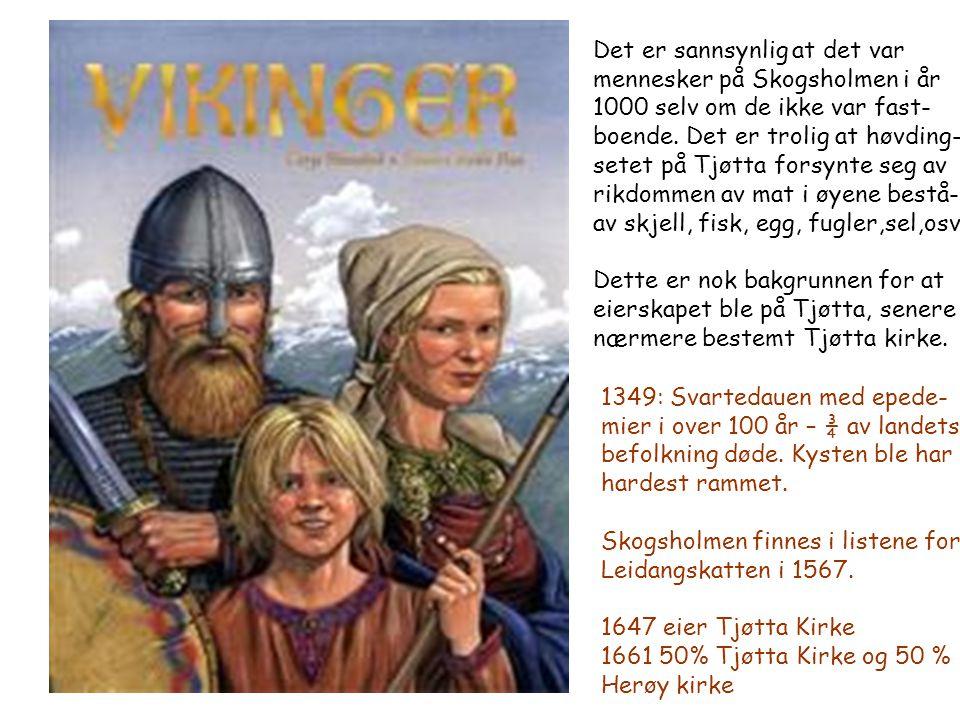 Det er sannsynlig at det var mennesker på Skogsholmen i år 1000 selv om de ikke var fast- boende. Det er trolig at høvding- setet på Tjøtta forsynte s