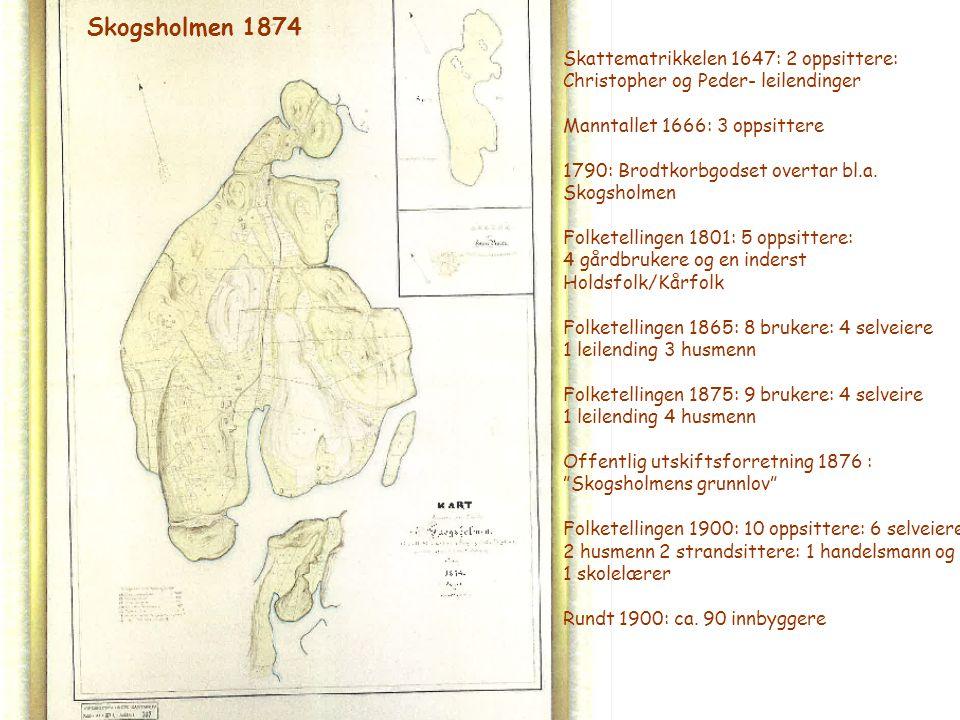 Skogsholmen 1874 Skattematrikkelen 1647: 2 oppsittere: Christopher og Peder- leilendinger Manntallet 1666: 3 oppsittere 1790: Brodtkorbgodset overtar
