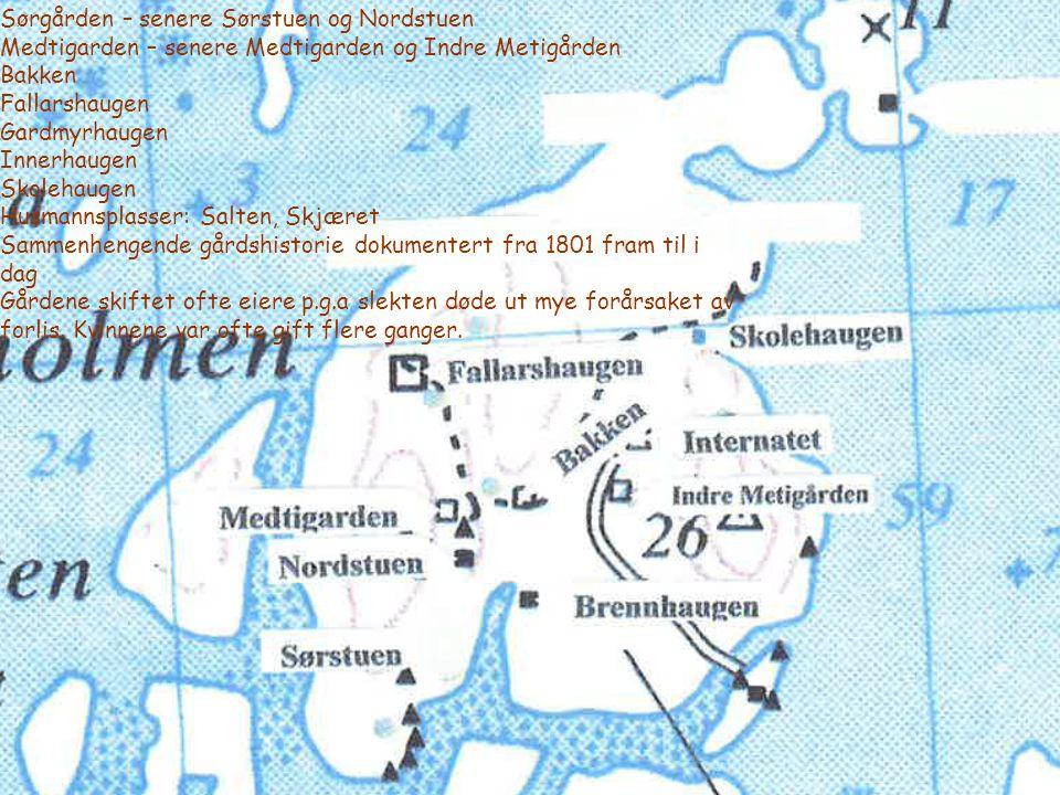 Sørgården – senere Sørstuen og Nordstuen Medtigarden – senere Medtigarden og Indre Metigården Bakken Fallarshaugen Gardmyrhaugen Innerhaugen Skolehaug