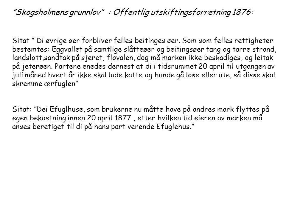"""Skogsholmens grunnlov"" : Offentlig utskiftingsforretning 1876: Sitat "" Di øvrige øer forbliver felles beitinges øer. Som som felles rettigheter beste"