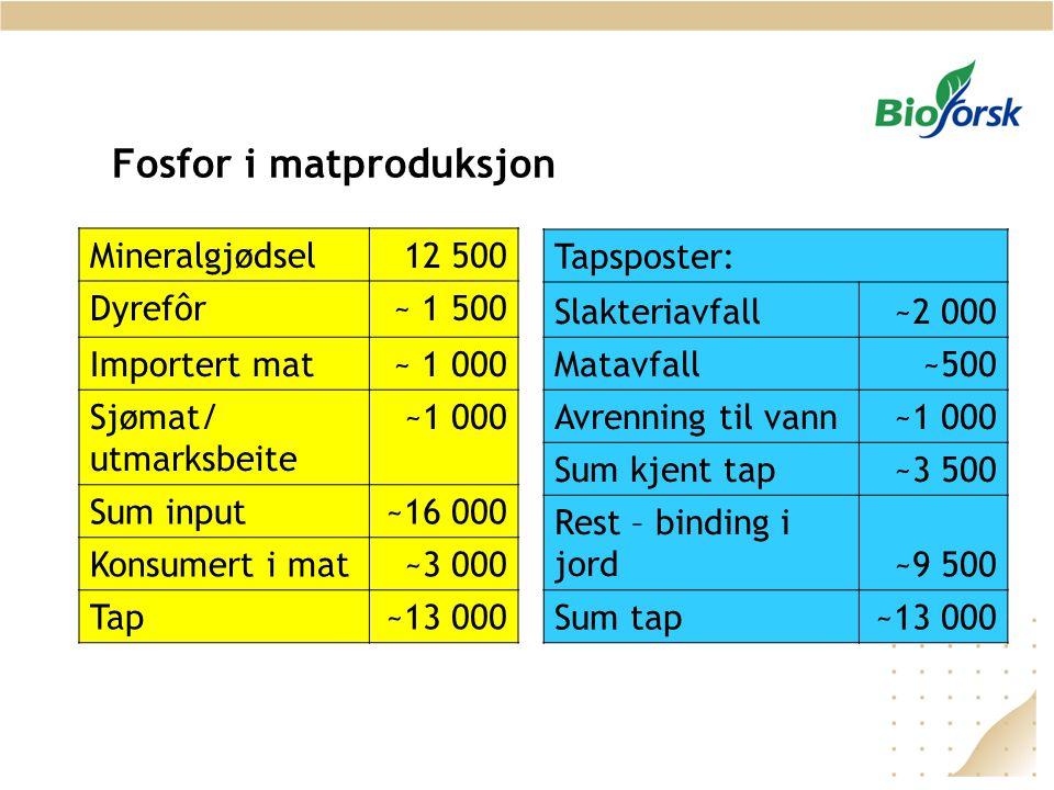 Fosfor i matproduksjon Mineralgjødsel12 500 Dyrefôr~ 1 500 Importert mat~ 1 000 Sjømat/ utmarksbeite ~1 000 Sum input~16 000 Konsumert i mat~3 000 Tap