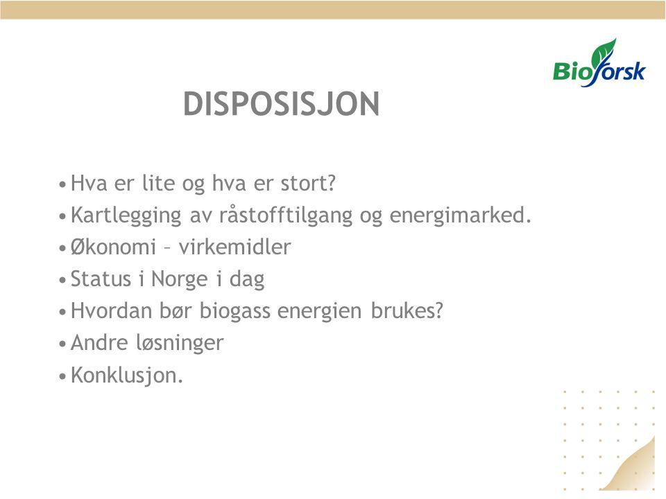 DISPOSISJON •Hva er lite og hva er stort? •Kartlegging av råstofftilgang og energimarked. •Økonomi – virkemidler •Status i Norge i dag •Hvordan bør bi