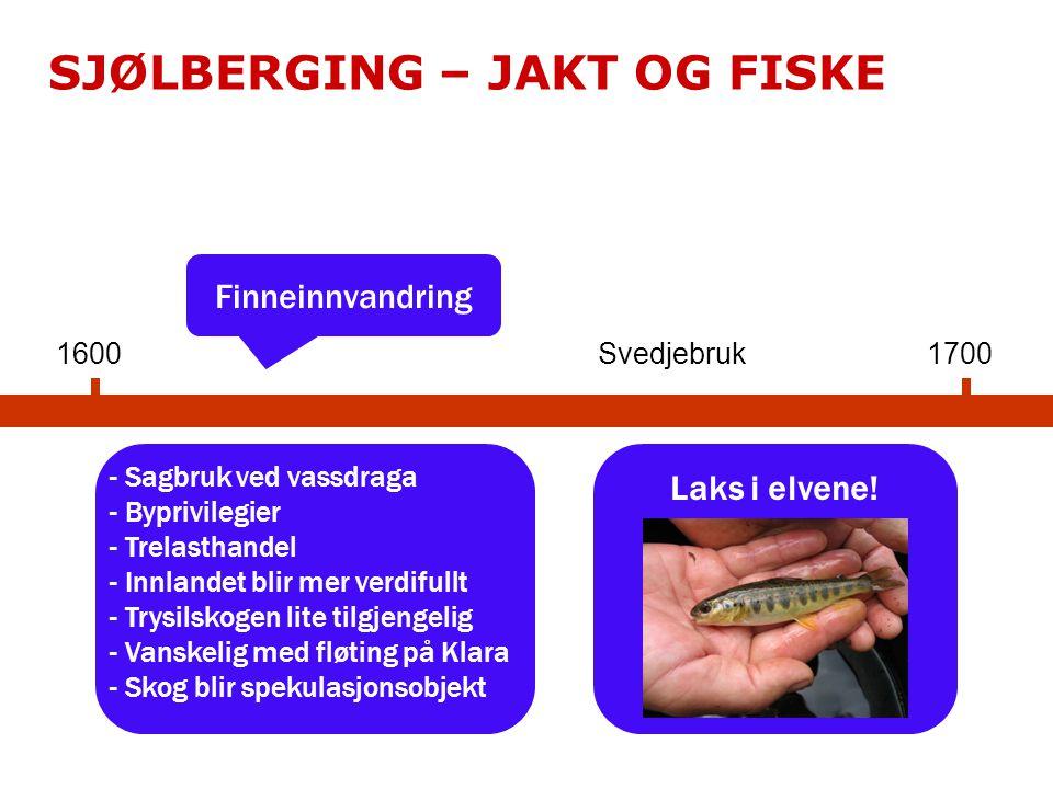1600 Finneinnvandring - Sagbruk ved vassdraga - Byprivilegier - Trelasthandel - Innlandet blir mer verdifullt - Trysilskogen lite tilgjengelig - Vanskelig med fløting på Klara - Skog blir spekulasjonsobjekt 1700 SJØLBERGING – JAKT OG FISKE Laks i elvene.