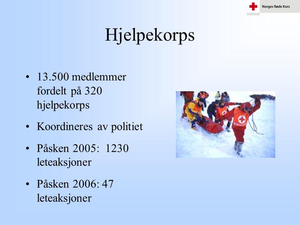 Hjelpekorps •13.500 medlemmer fordelt på 320 hjelpekorps •Koordineres av politiet •Påsken 2005: 1230 leteaksjoner •Påsken 2006: 47 leteaksjoner