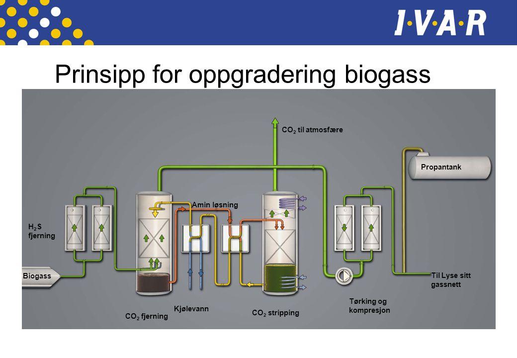 Prinsipp for oppgradering biogass H 2 S fjerning CO 2 fjerning Kjølevann Amin løsning CO 2 stripping CO 2 til atmosfære Tørking og kompresjon Propanta