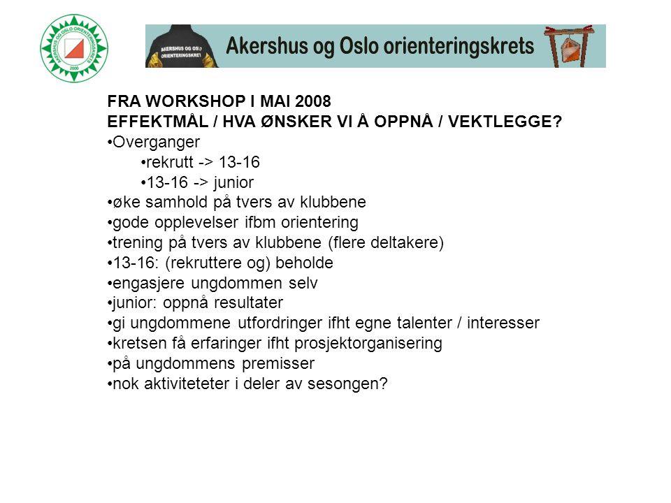 FRA WORKSHOP I MAI 2008 EFFEKTMÅL / HVA ØNSKER VI Å OPPNÅ / VEKTLEGGE.