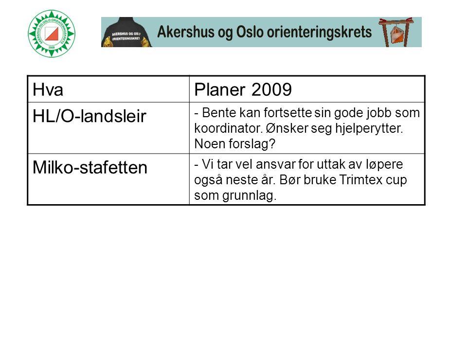 HvaPlaner 2009 HL/O-landsleir - Bente kan fortsette sin gode jobb som koordinator.