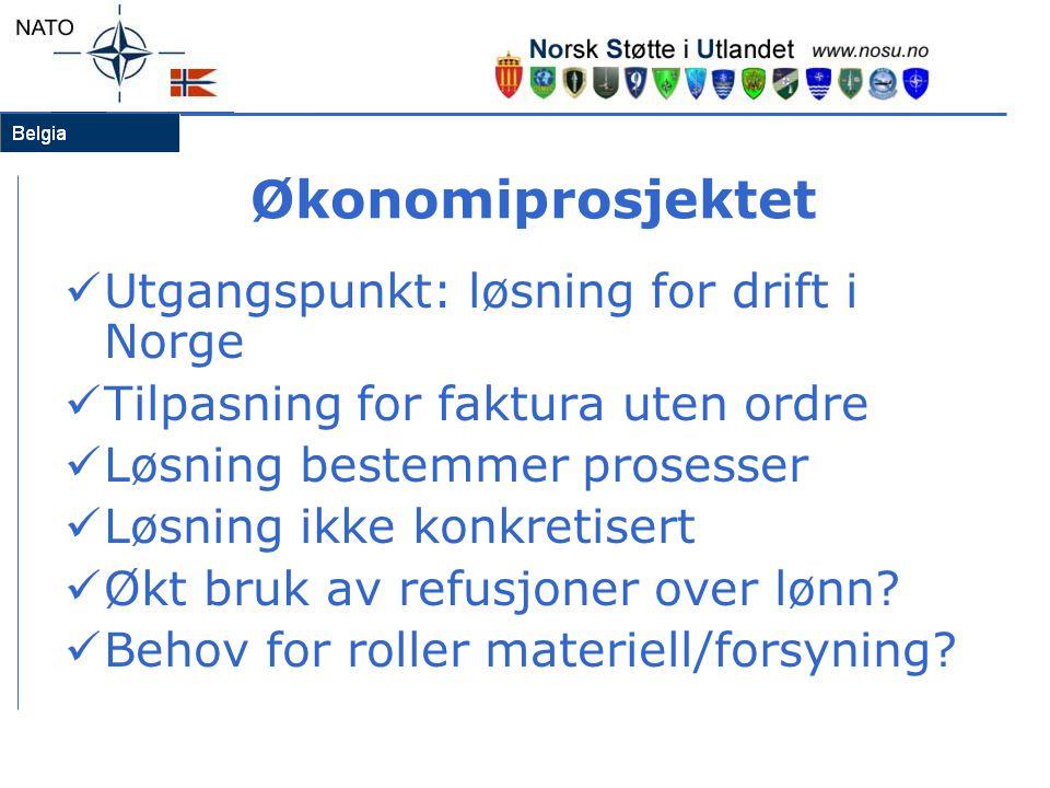 Økonomiprosjektet  Utgangspunkt: løsning for drift i Norge  Tilpasning for faktura uten ordre  Løsning bestemmer prosesser  Løsning ikke konkretis